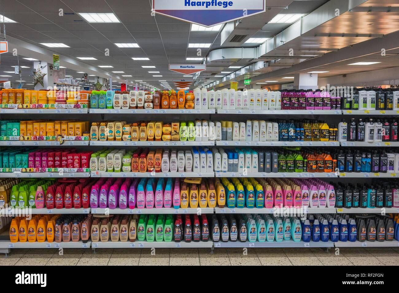 Hair care products in the supermarket, Munich, Upper Bavaria, Bavaria, Germany Stock Photo