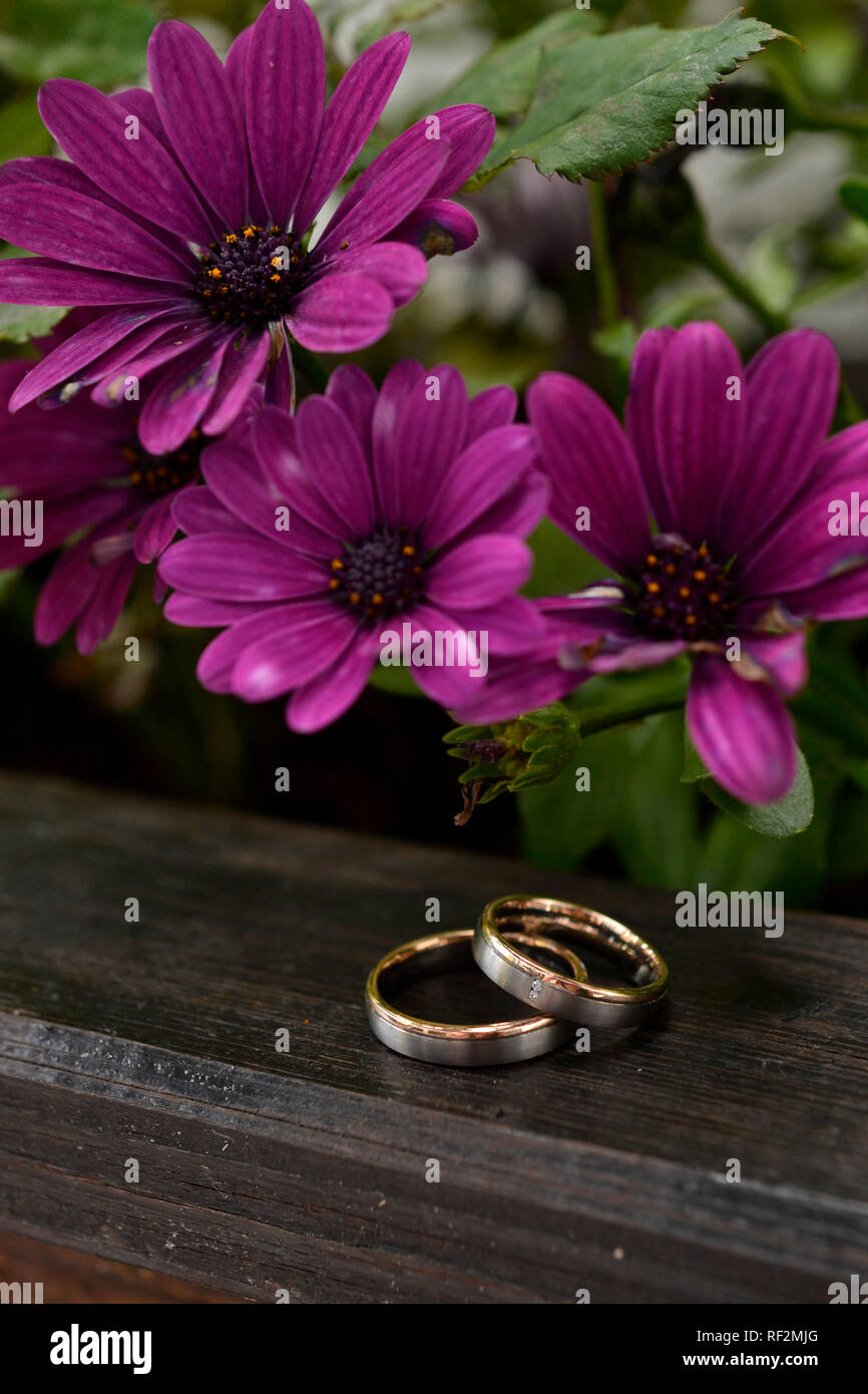 wedding marry ring engagement love gold flowers - Stock Image