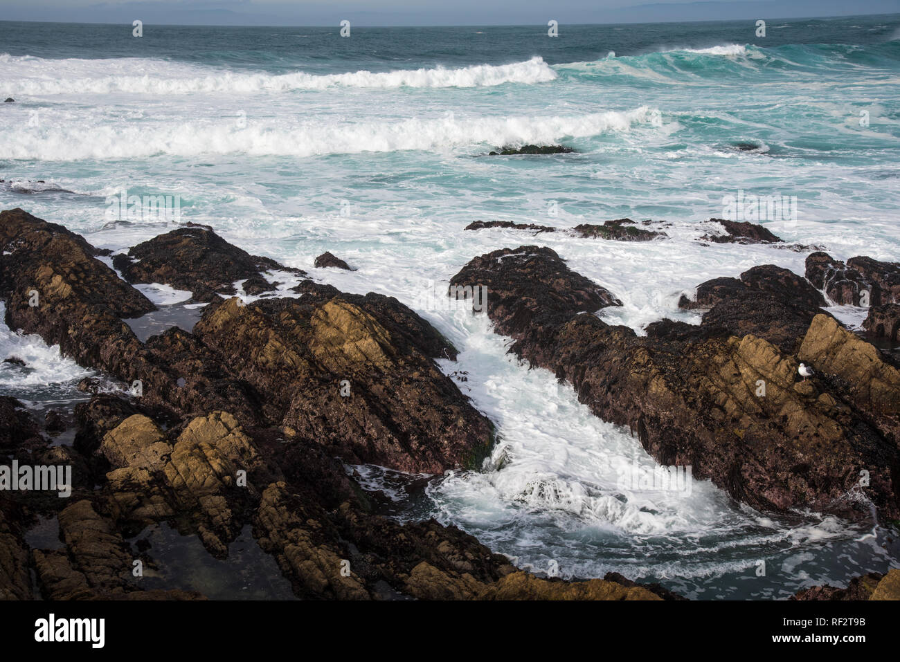 Rocky shore line, waves and beach scene on the Monterrey Peninsula.  The variation and variety of beautiful seascapes are endless. Stock Photo