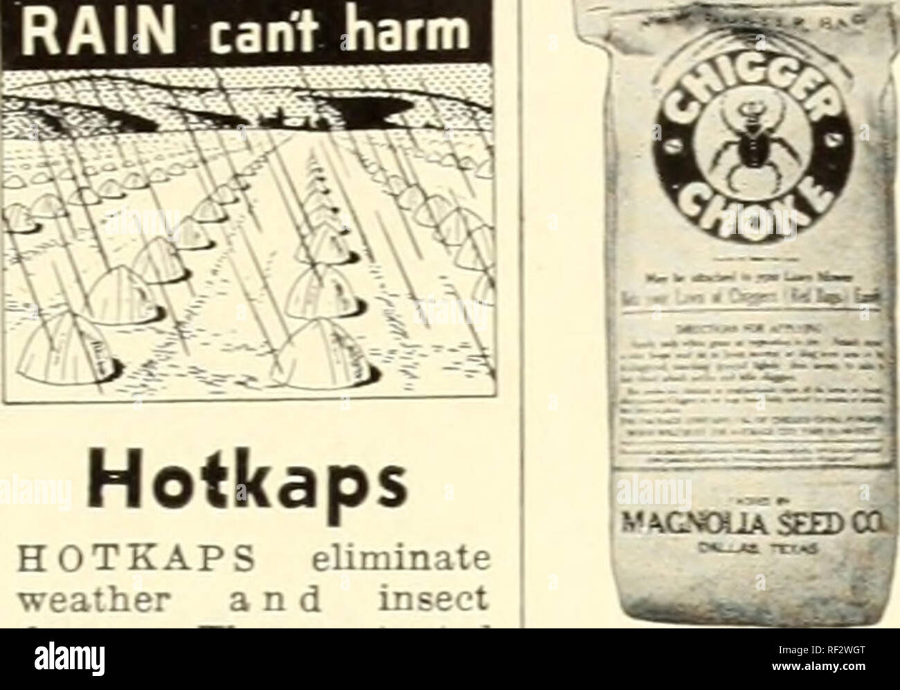 . Catalog 1944 : magnolia seeds are good seeds.. Seeds Catalogs; Vegetables Catalogs; Plants Catalogs; Flowers Catalogs; Gardening Equipment and supplies Catalogs. PLANT PROTECTORS—INSECTICIDES AND PEST KILLERS FROST can't hurt I RAIN cant harm Urn IN5ECTG cant touch ft I. Hotkaps HOTKAPS eliminate weather and insect damage. These patented wax paper cones form miniature hot houses over each plant, pro- mote sturdy rrowth and bring- crops to ma- turity two to three weeks earlier, thus get- ting premium prices. Inexpensive to buy. Easy to set out. One man can place 2000 or more per day. Prices W - Stock Image