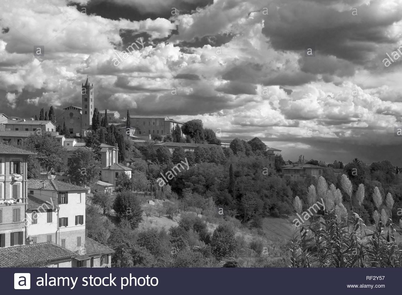 The tower of Santa Maria dei Servi in the Contrada di Valdimontone, from the Piazza del Mercato, Siena, Tuscany, Italy: black and white version - Stock Image