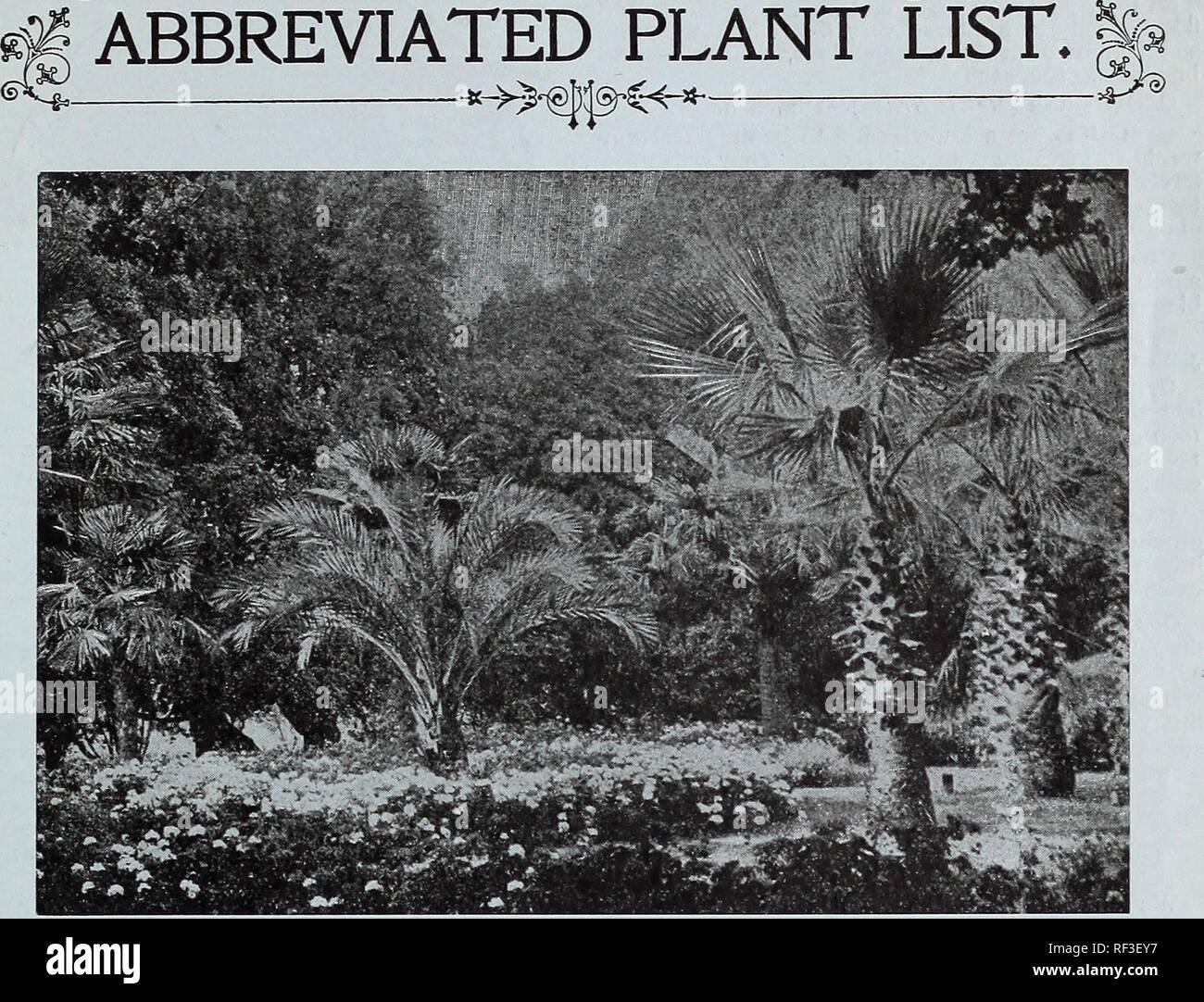 Catalogue For Autumn Planting Plants Bulbs And Seeds Nursery