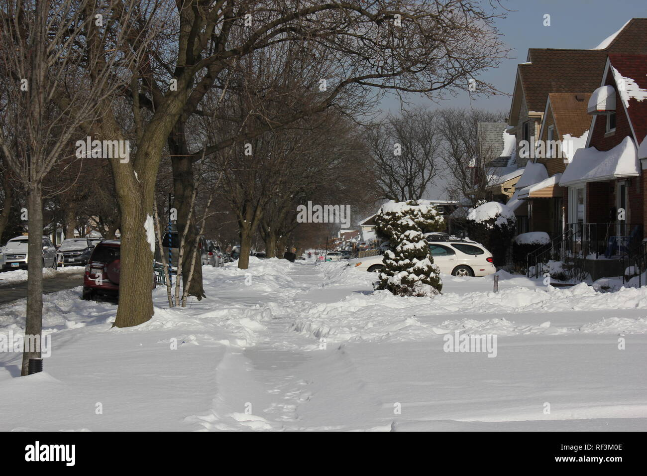 Local Chicago Edison Park neighborhood covered in snow after the blizzard. - Stock Image
