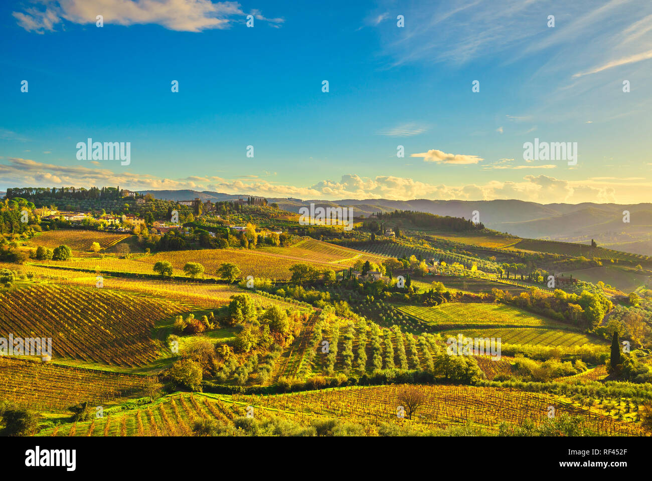 Panzano in Chianti vineyard and panorama at sunset in autumn
