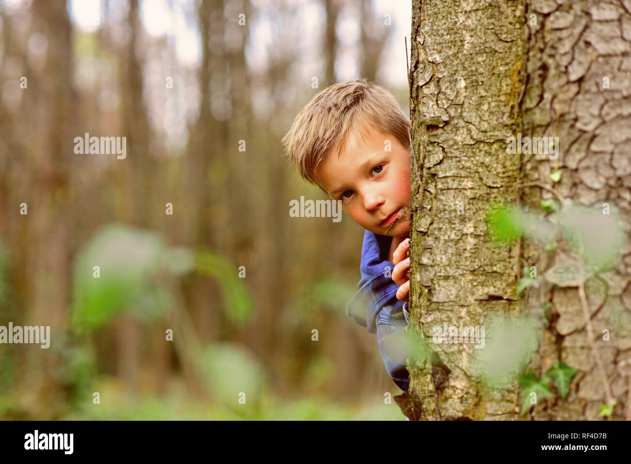 Enjoying my childhood. Little boy have fun in woods. Little boy play hide and seek. Outdoor games is my childhood - Stock Image