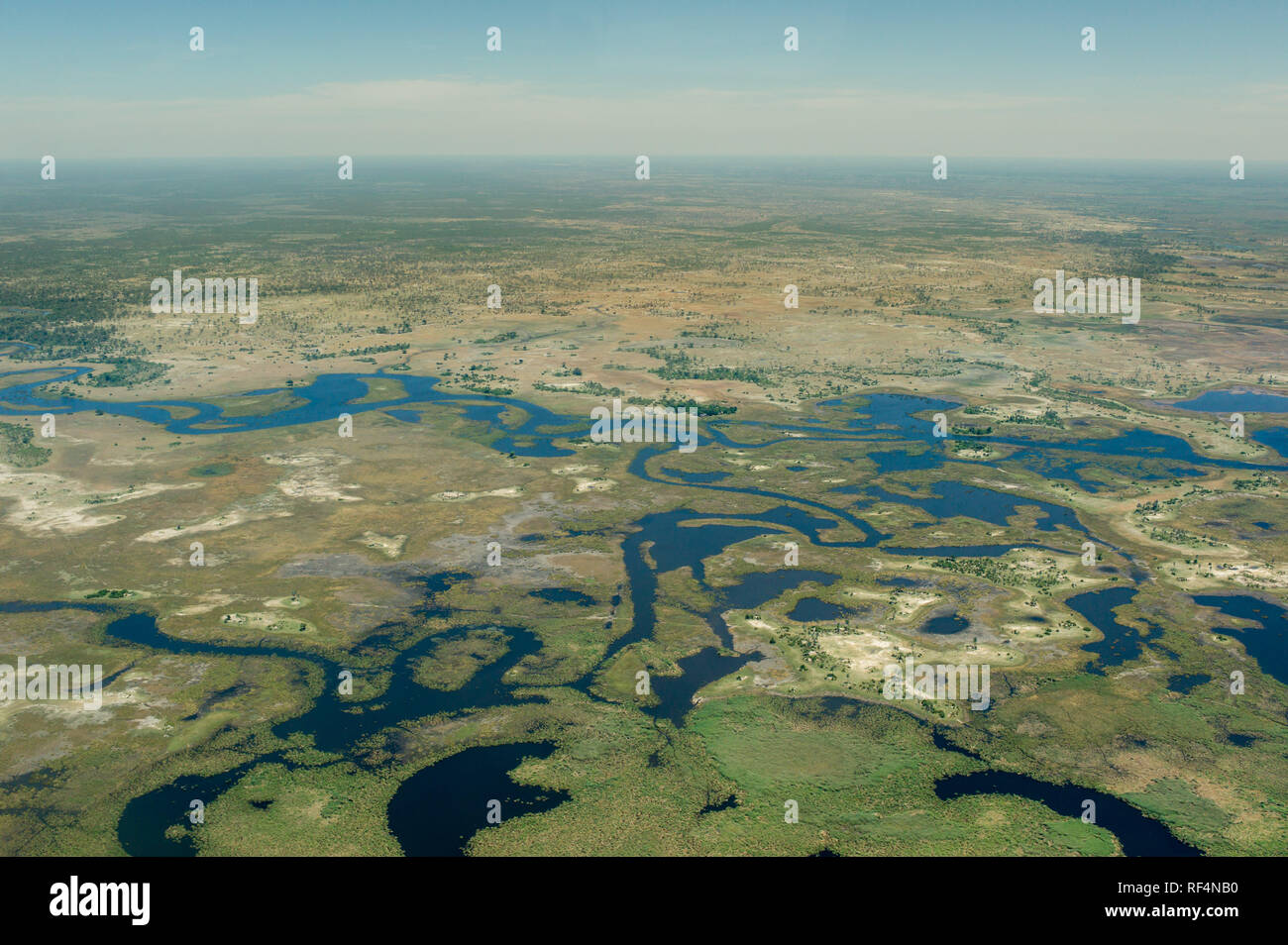 The Okavango Delta in Botswana is a famous and dynamic ecostem where the water levels in the swamps change dramatically over the course of the seasons - Stock Image