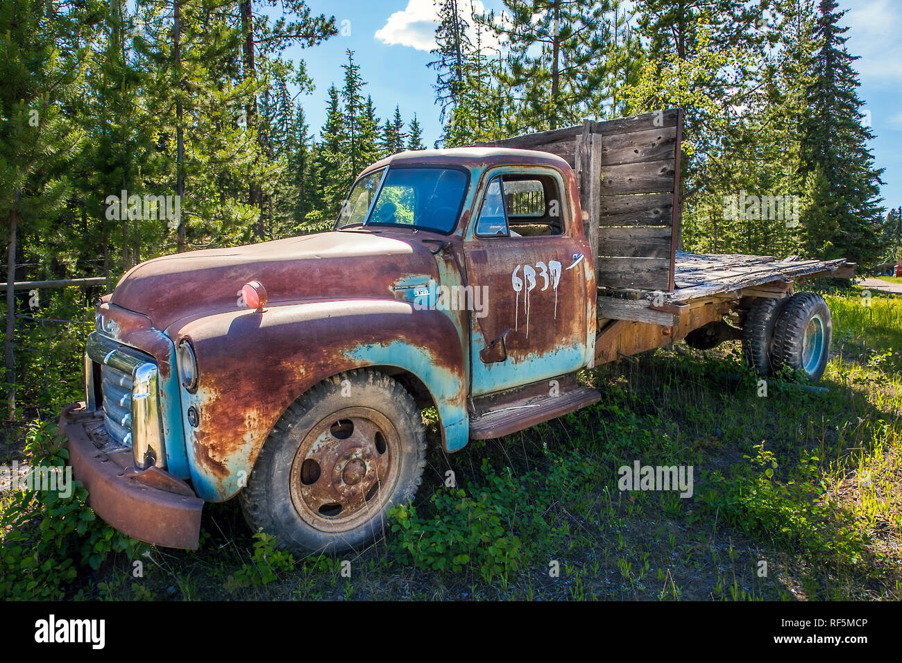 Fort Fraser, British Columbia, Canada. June 17, 2018. Old rusted car in the forest - Stock Image
