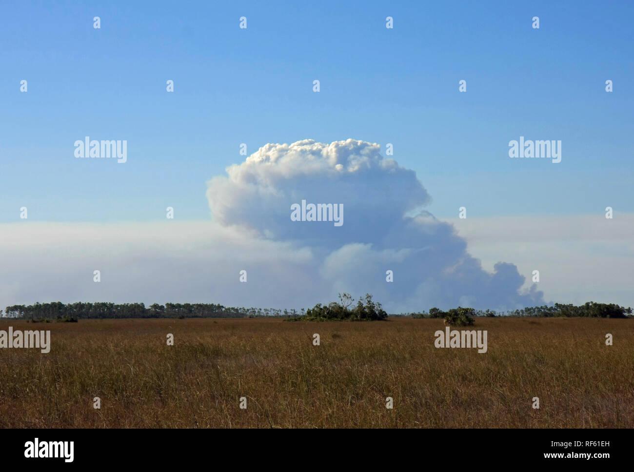 Smoke over the Sawgrass Prairie of Everglades National Park, Florida. - Stock Image