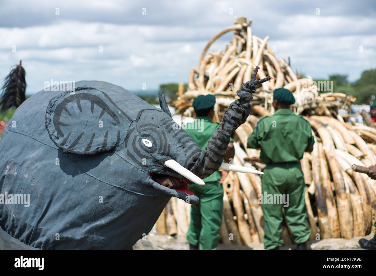 Traditional gule wamkulu tribal dancers perform a spiritual ceremony in front of confiscated elephant ivory scheduled to burn, Lilongwe Malawi - Stock Image