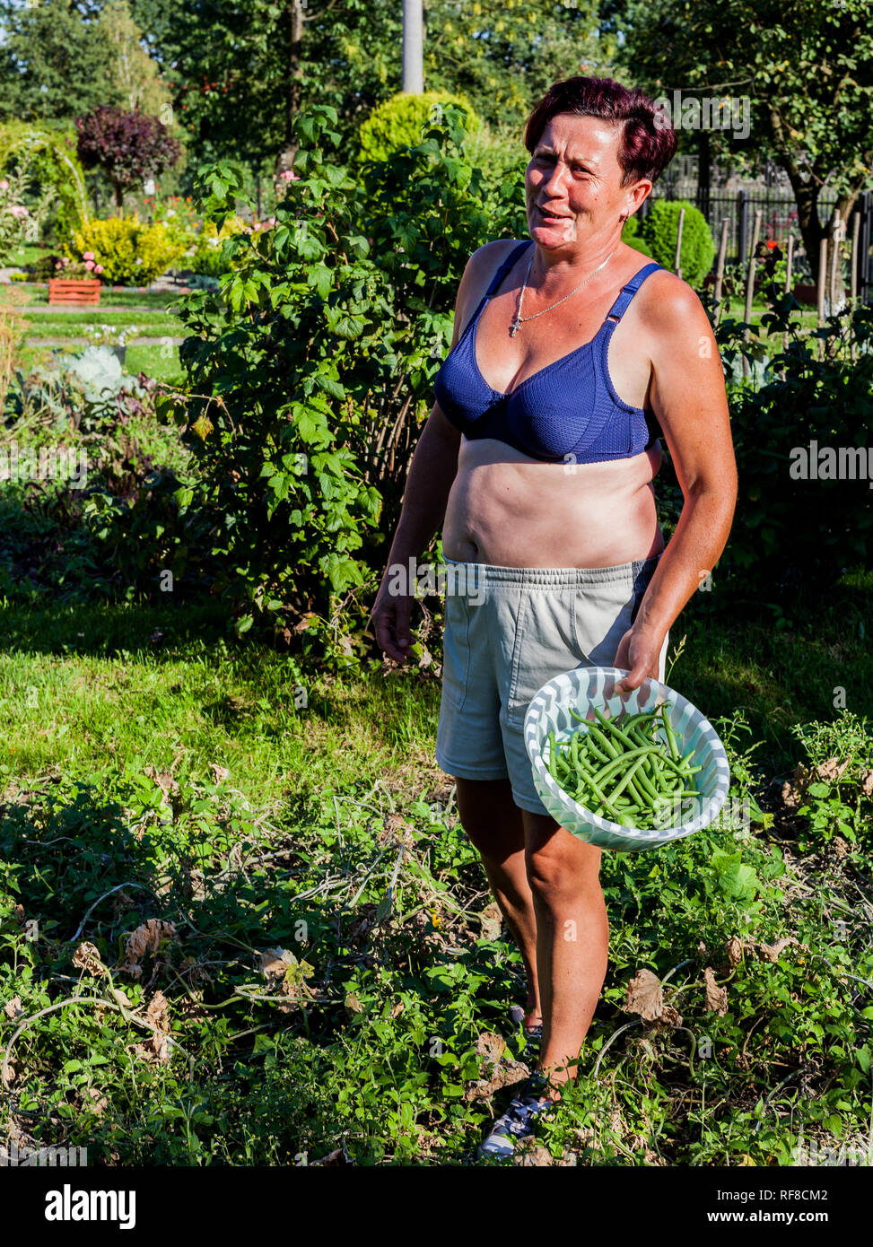 A woman wearing brassiere standing in the middle of the vegetable garden. The brunet housewife holding a basket full of crops. Harvesting the plant fr - Stock Image