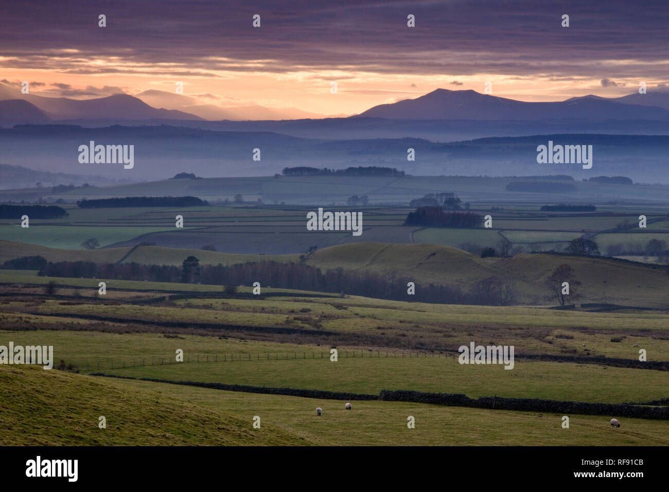 A view across the Eden Valley to the North Lakeland Fells, Cumbria Stock Photo