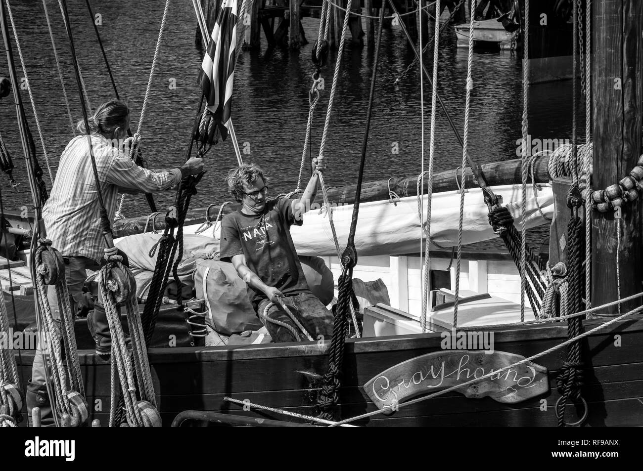 Sailors hauling on a rope in a traditional old sailing fishing boat, Douarnenez - Stock Image