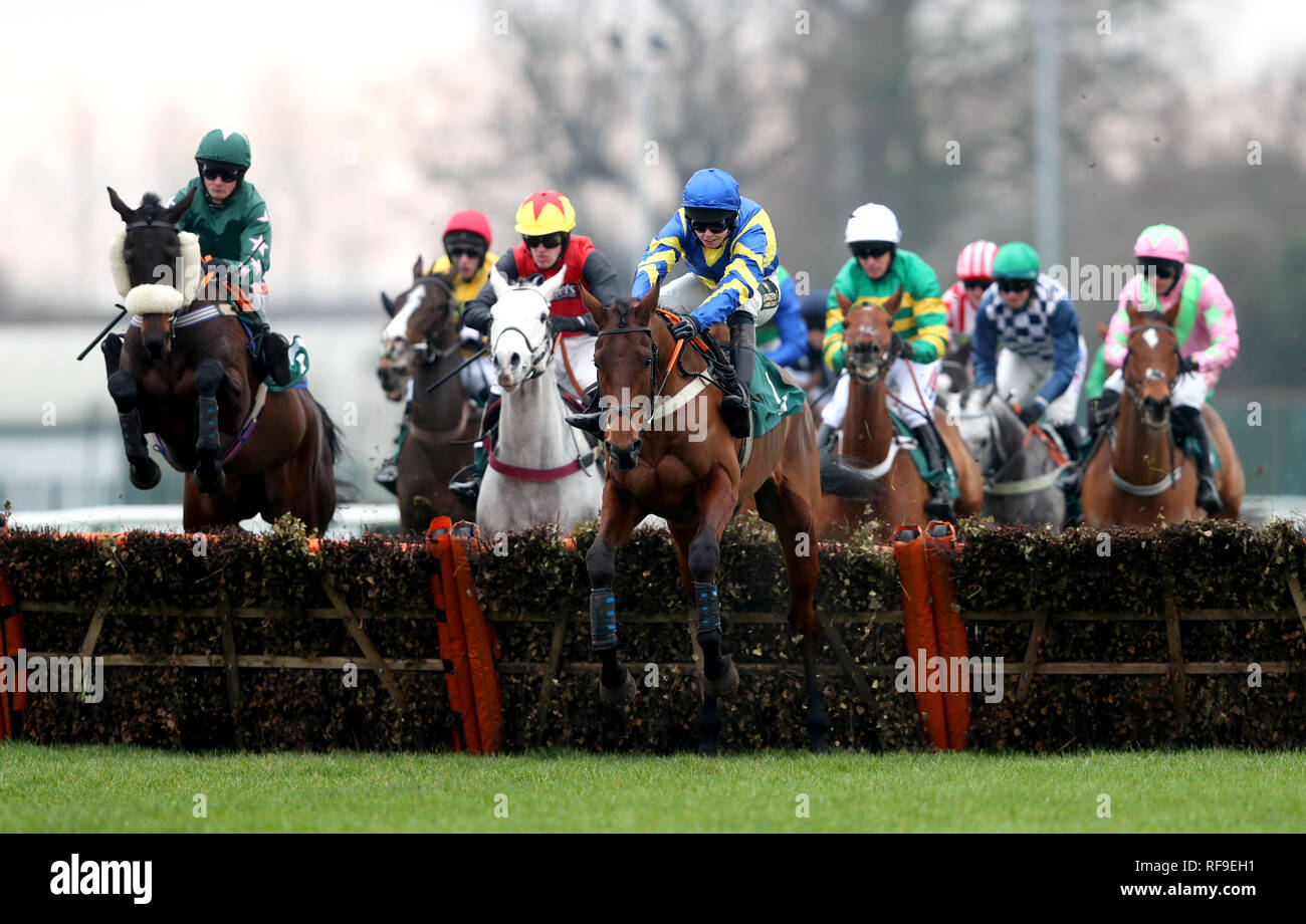 A general view of the runners and riders competing in the