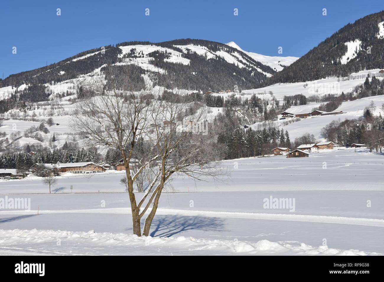Pinzgau, Salzach, Salzburg, Österreich, Winter, Schnee, Eis, vereist, Loipe, Langlaufen, Niedernsill, Lengdorf, Fluss, Nebel, Nebelschwaden, Dunst, - Stock Image