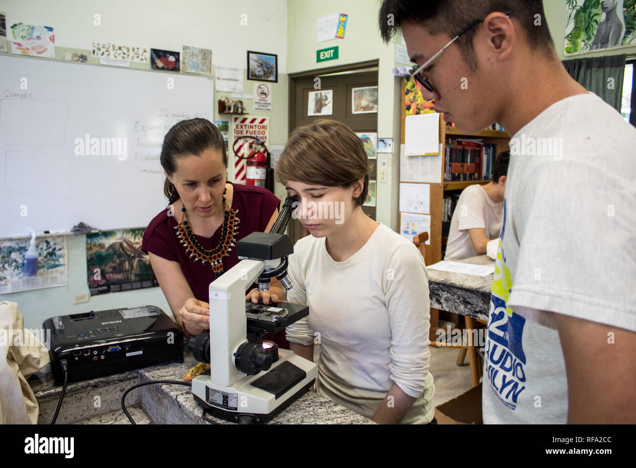A photo of a female teacher instructing two international students on using a microscope. Investigating a biological sample in a biology class. - Stock Image