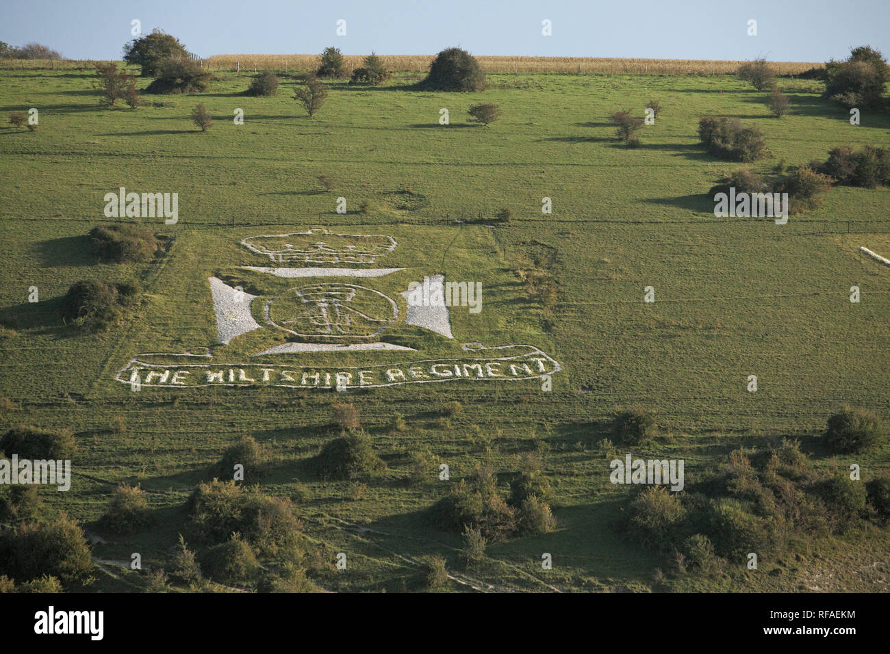 The Wiltshire Regiment military badge in chalk on hillside Fovant