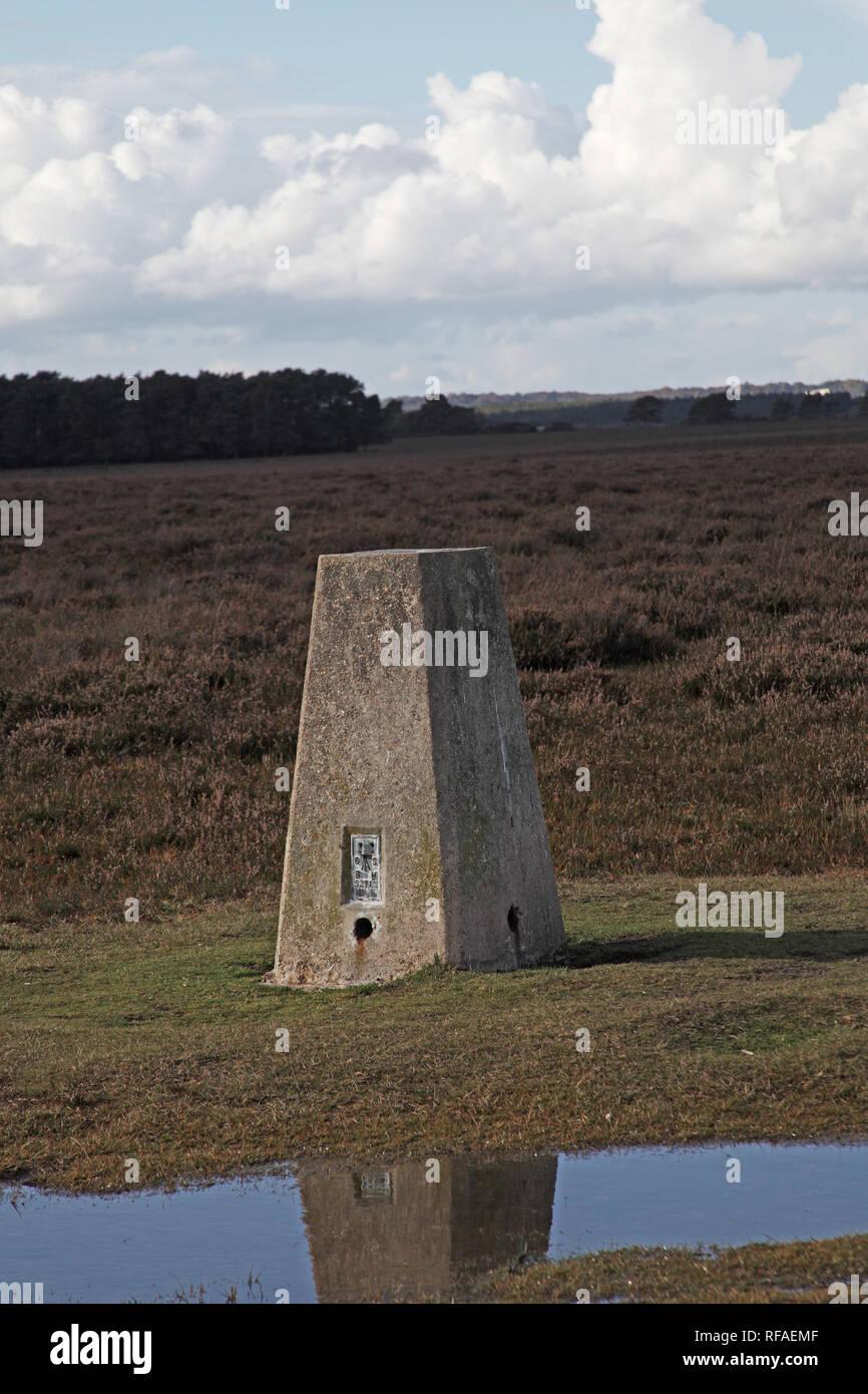 Triangulation point on Yew Tree Heath near Beaulieu Road Station New Forest National Park Hampshire England UK - Stock Image