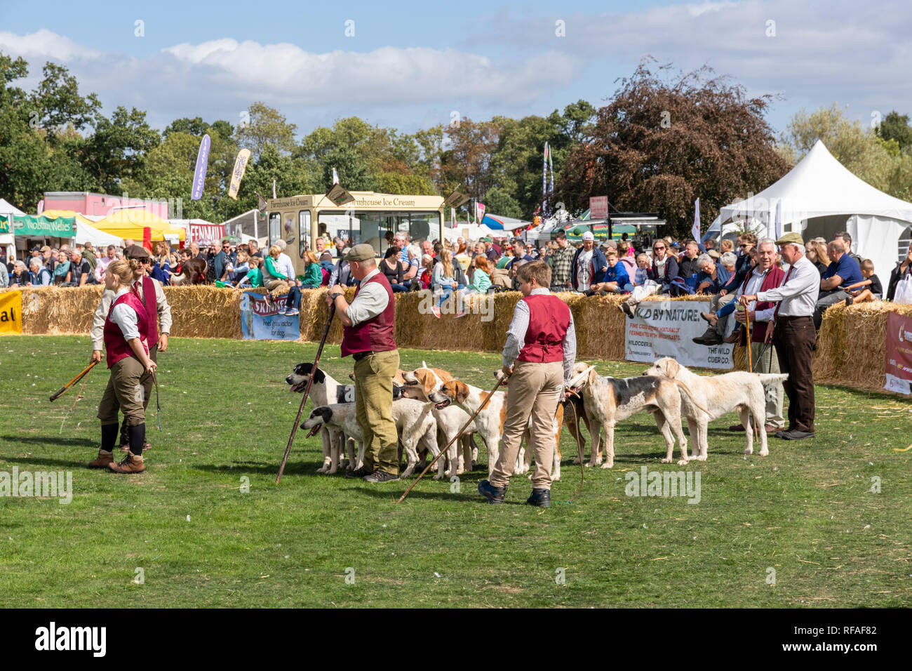 A parade of the hounds at the Frampton Country Fair 2018 held at Frampton Court, Frampton on Severn, Gloucestershire UK - Stock Image