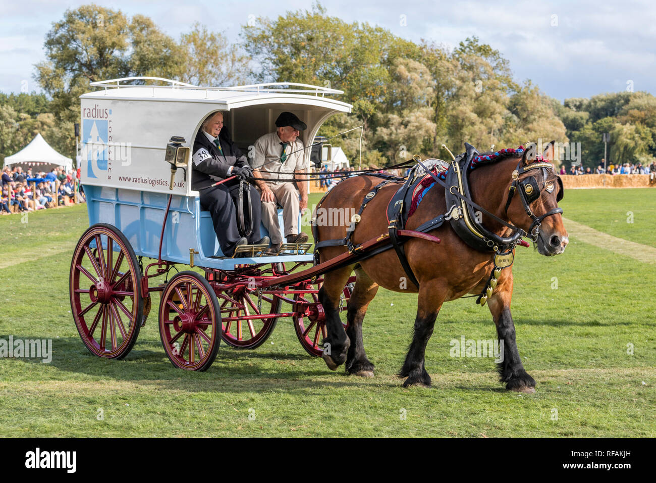A demonstration of cart horses at the Frampton Country Fair 2018 held at Frampton Court, Frampton on Severn, Gloucestershire UK - Stock Image