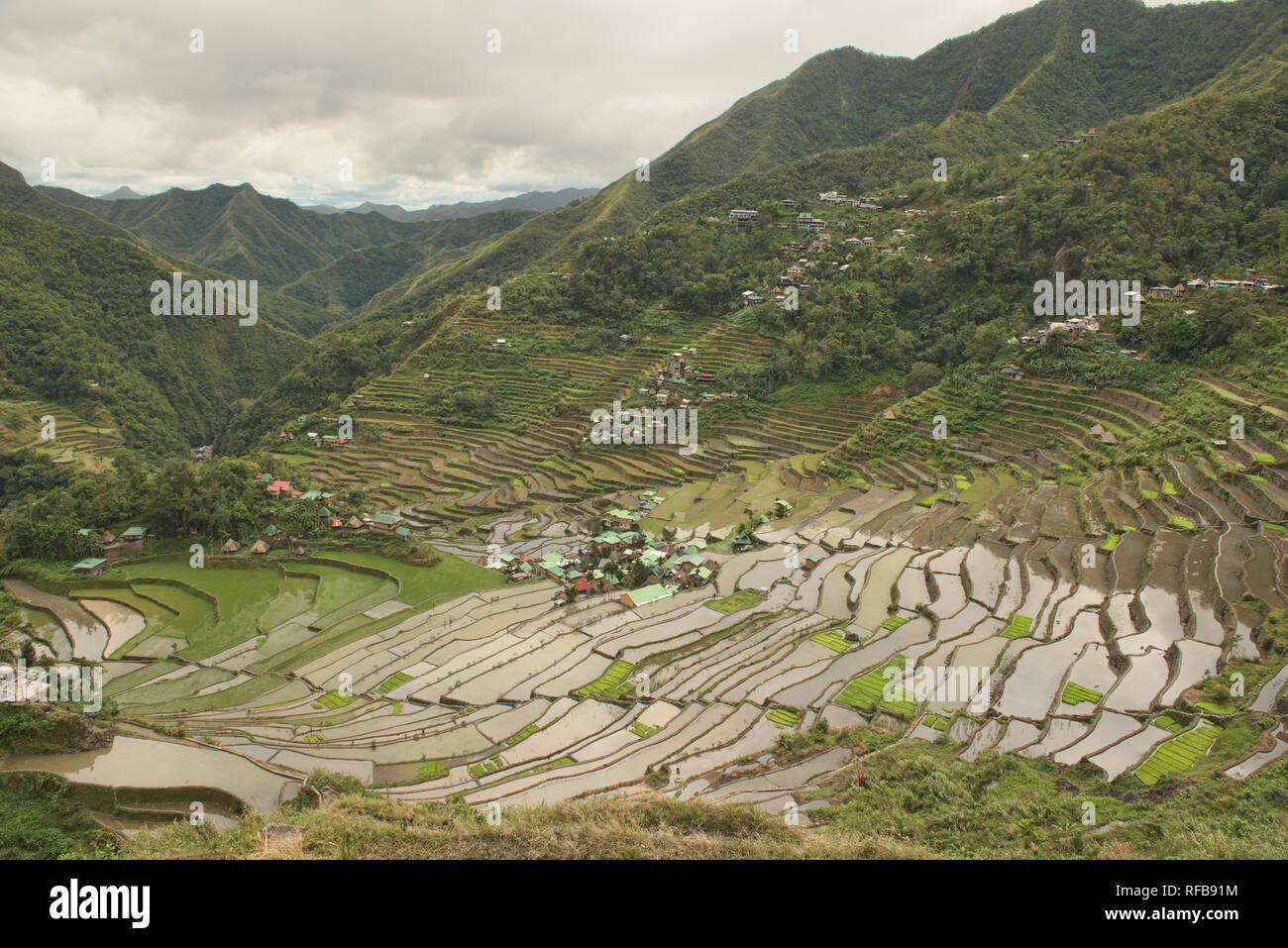 The amazing UNESCO rice terraces of Batad, Banaue, Mountain Province, Philippines - Stock Image