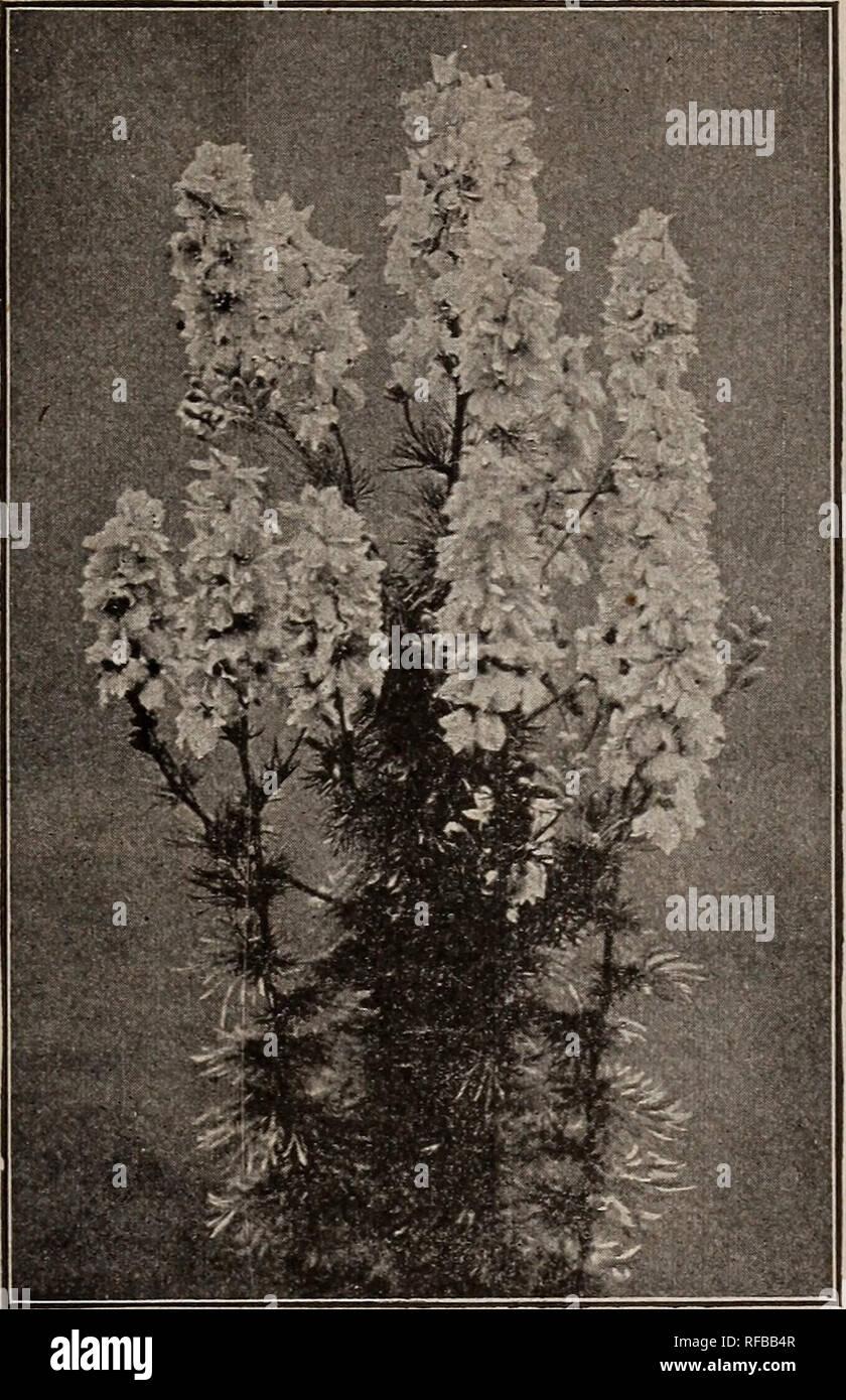 2 Garden Stock Photos & 2 Garden Stock Images - Page 146 - Alamy