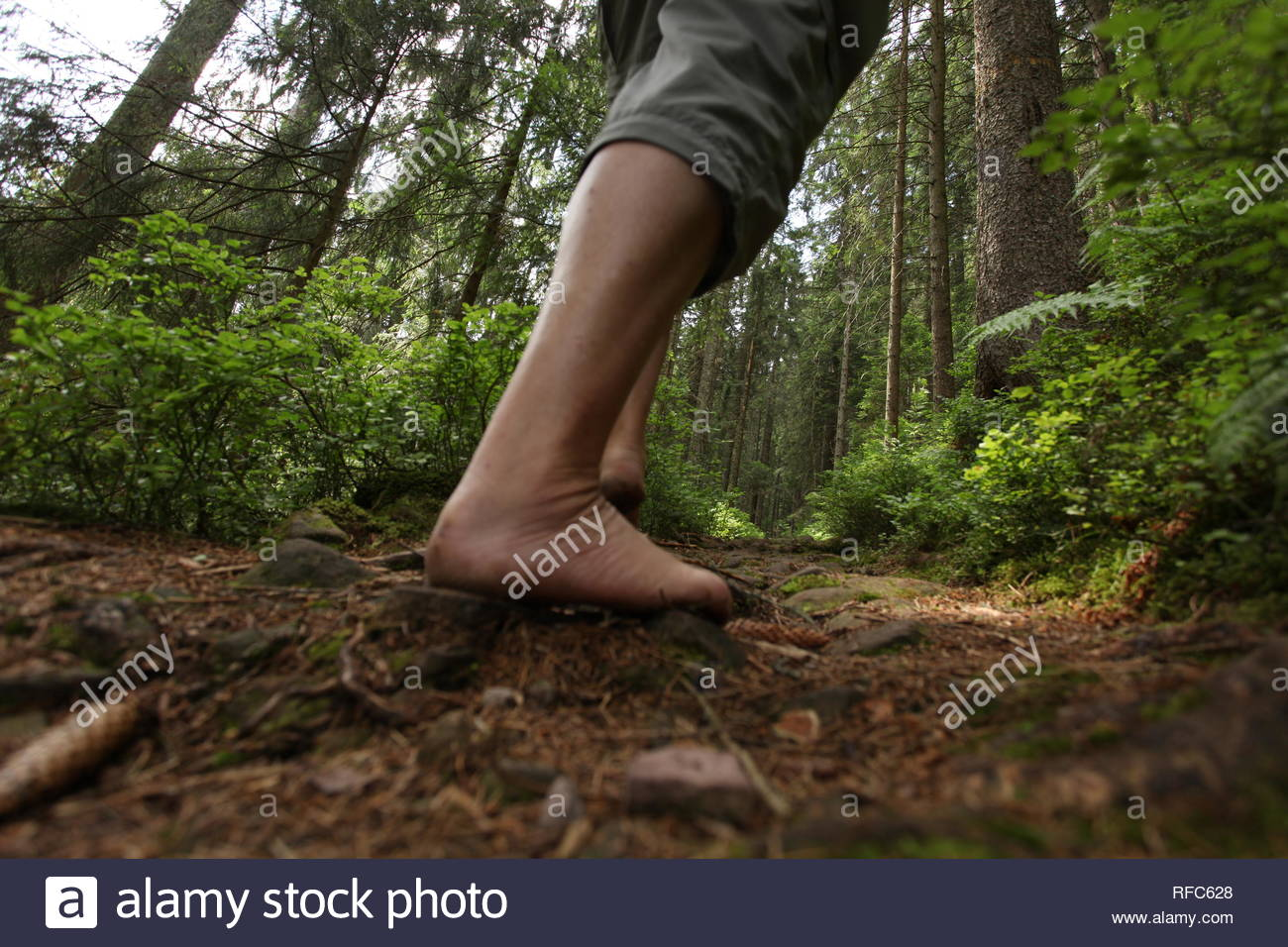 Barfuss gehen in der Natur, barfuss wandern - Stock Image