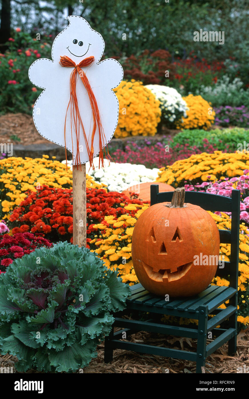 63821 120 15 Halloween Garden Display Ghost Jack O Lantern On Green Chair Ornamental Kale Mums Marion Co Il Stock Photo Alamy