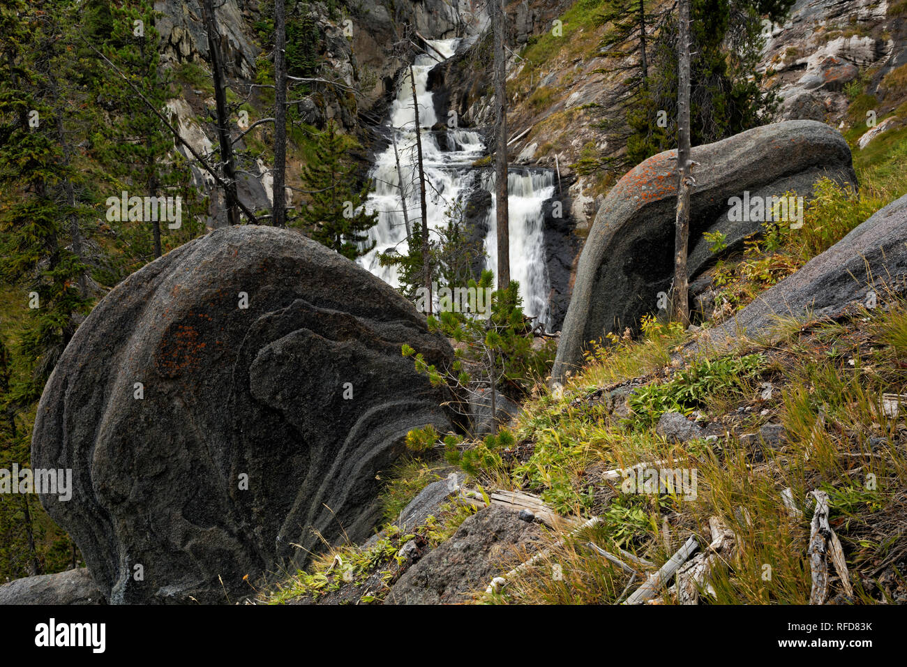 WY02949-00...WYOMING - Rounded and layered rock fins on the hillside abobe Mystic Falls located on the Little Firehole River in Yellowstone National P - Stock Image