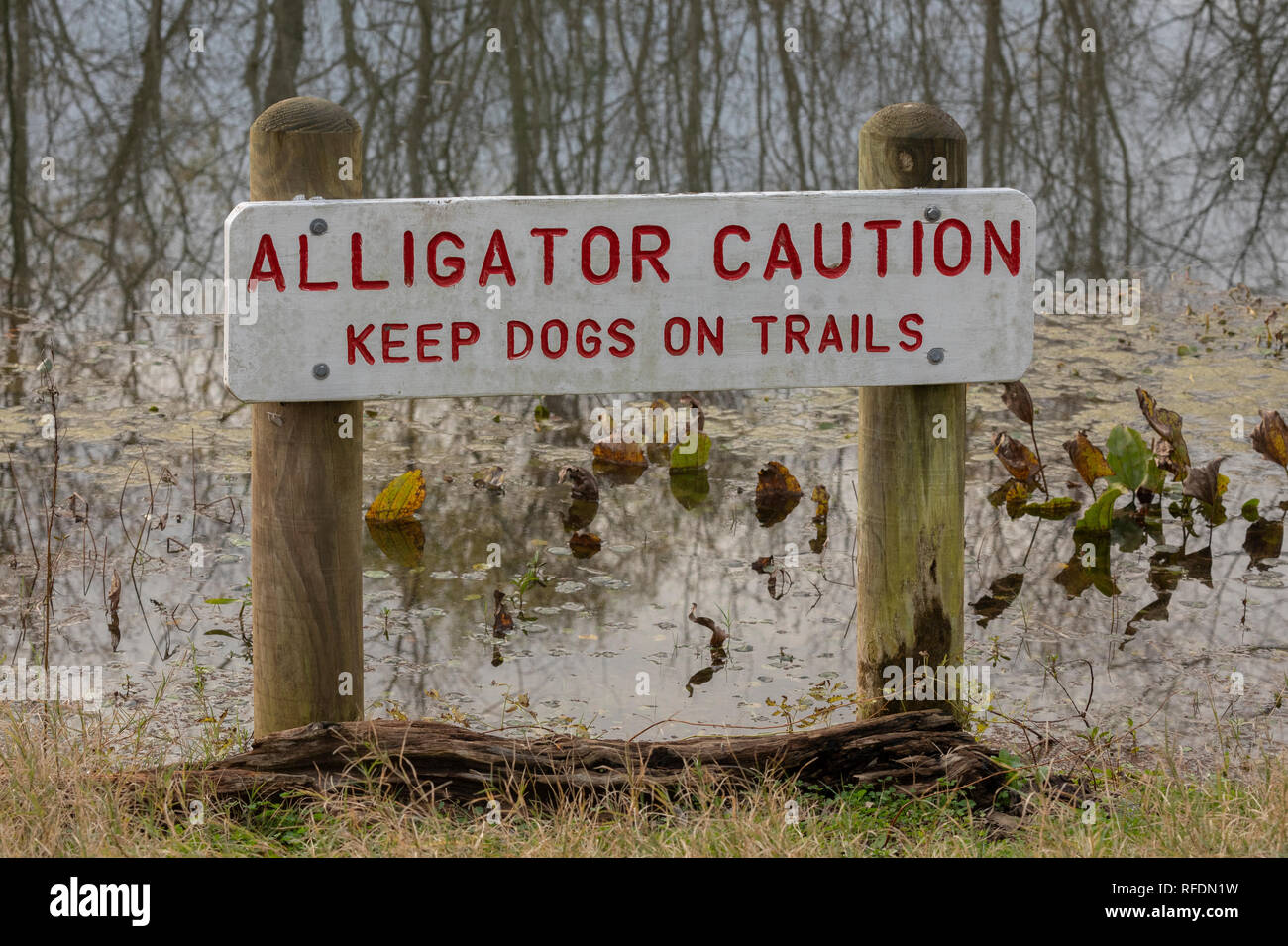 Alligator sign in Brazos Bend State Park, Texas. - Stock Image