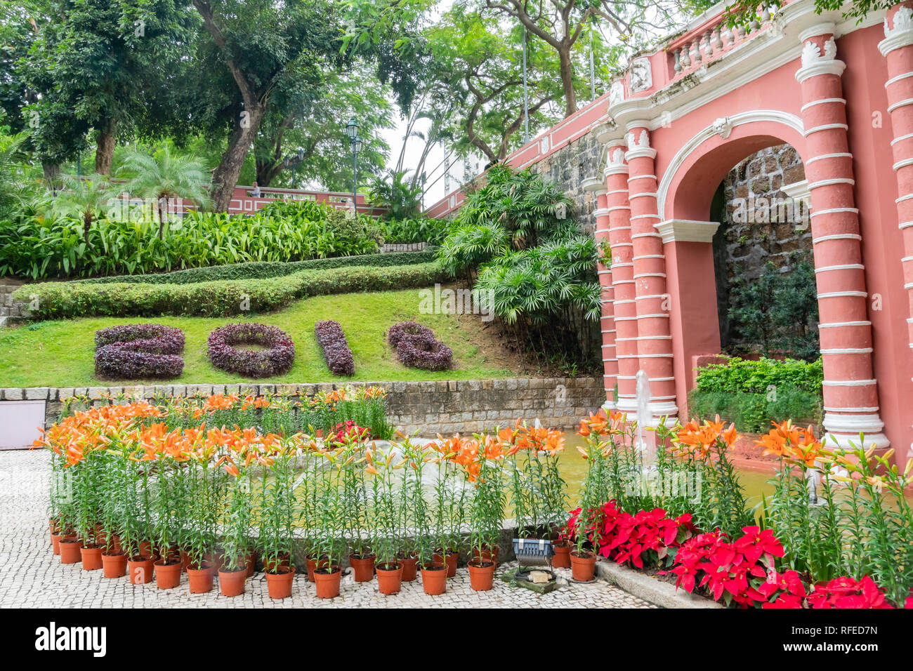 Montanha Russa Garden with lily and poinsettia blossom at Macau - Stock Image