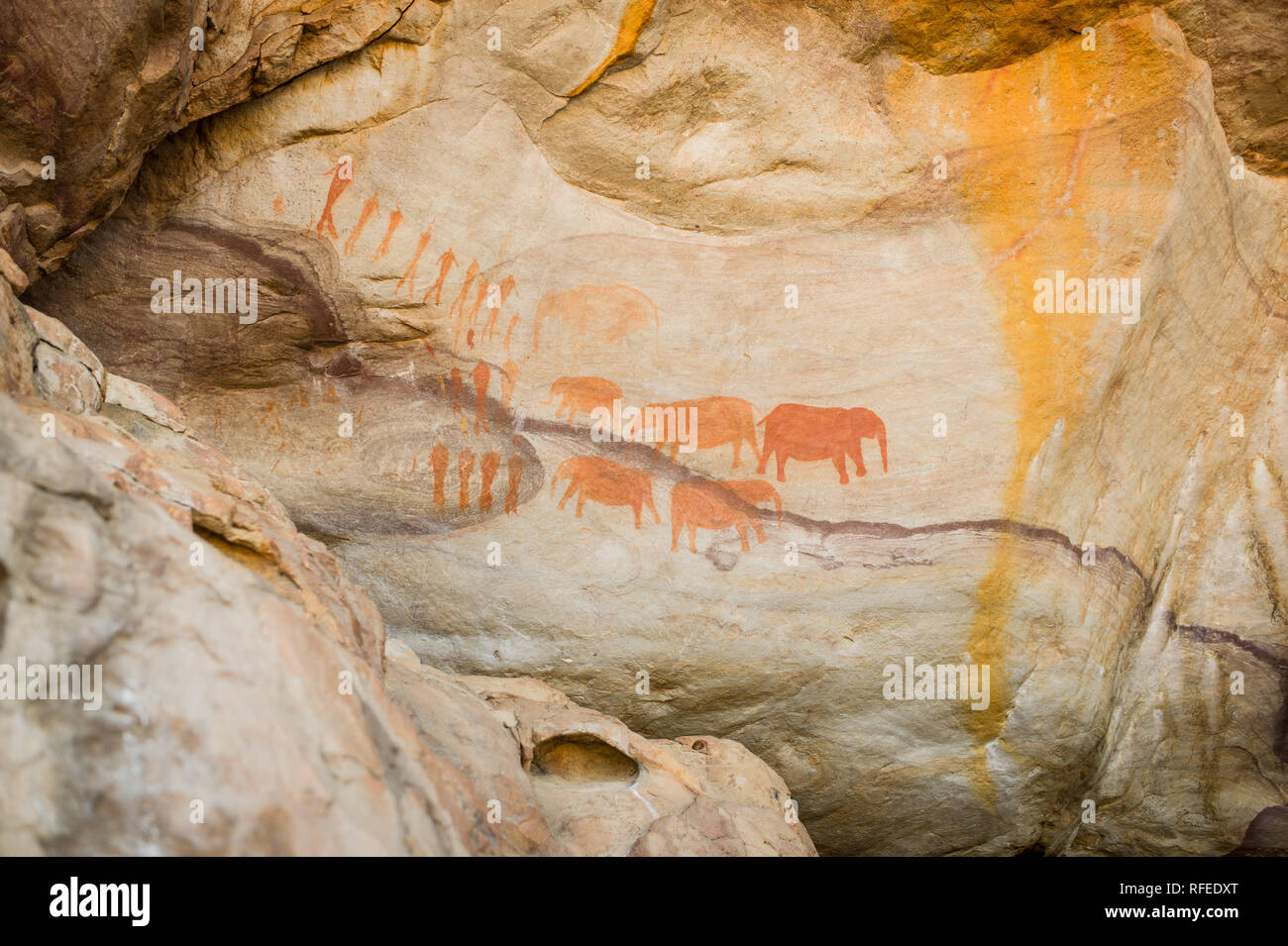 The elephant paintings rock art site at the Stadsaal caves, Cederberg, is estimated to be at least 1000 years old and created by San people - Stock Image