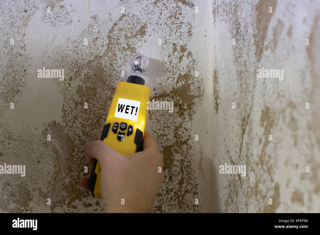 Humidity is measured at a wall in the basement. Instrument indicates a wet wall. - Stock Image