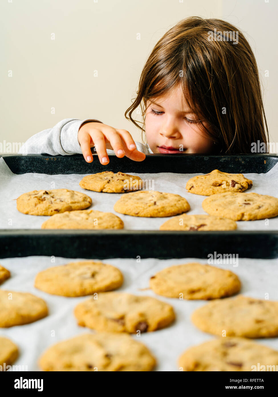 Photo of a young girl grabbing a warm chocolate chip cookie from a baking tray. - Stock Image