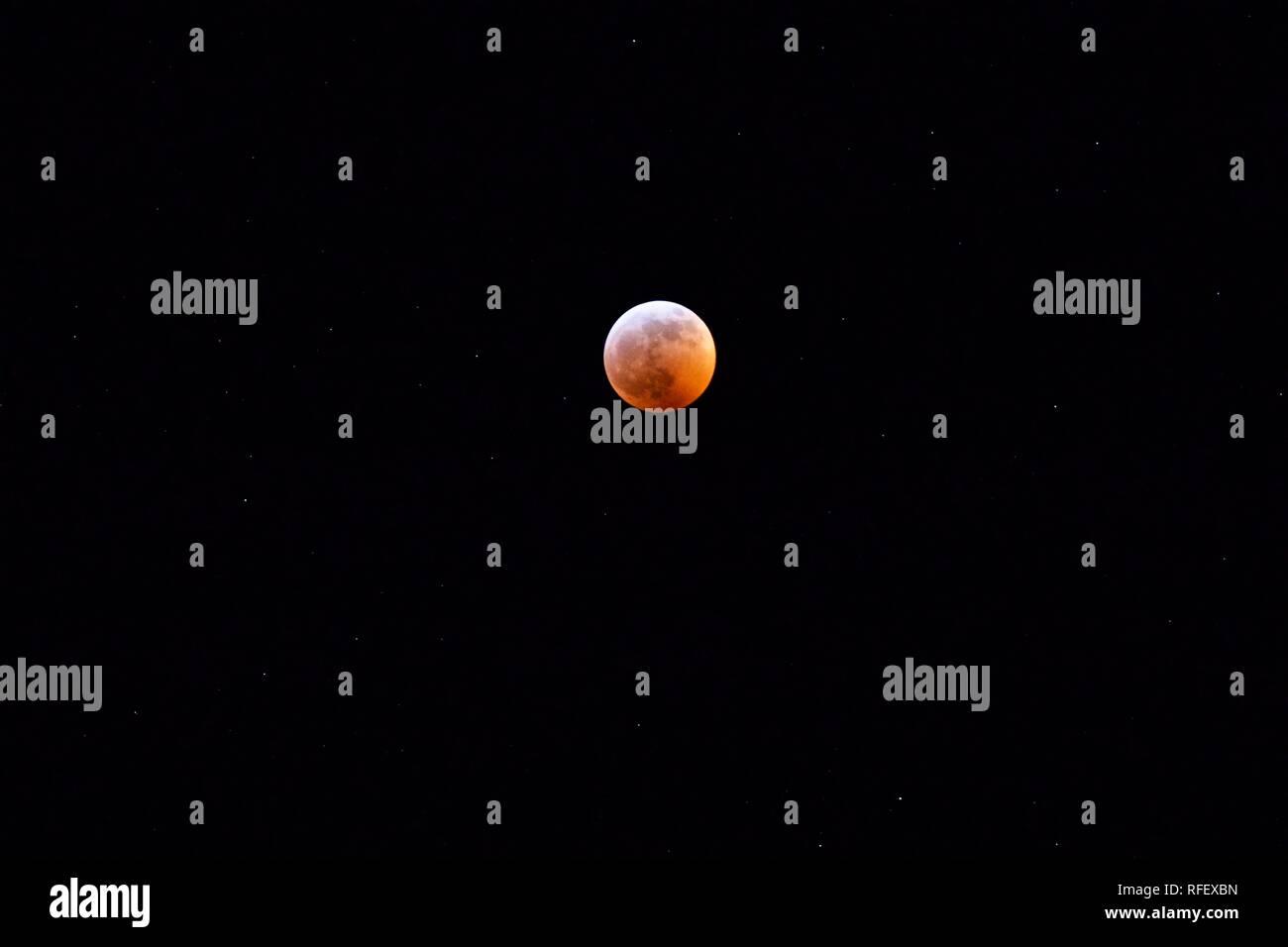 Lunar Eclipse - Super Wolf Blood Moon - Stock Image
