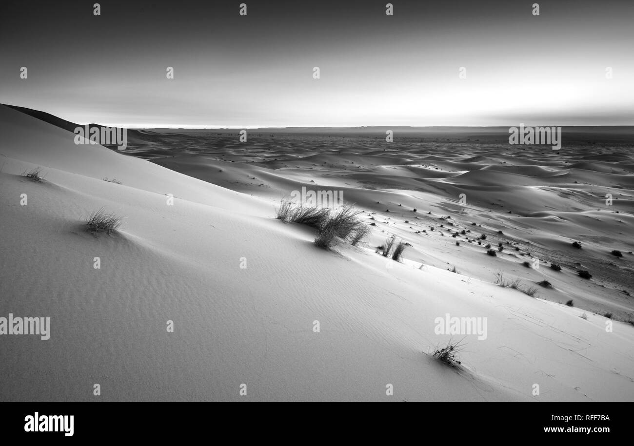 Sand dunes at sunrise, black and white photo, Erg Chebbi, Merzouga, Sahara, Morocco Stock Photo
