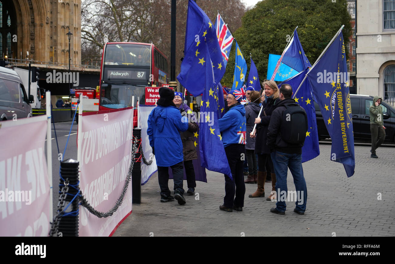 London, England, Jan 16th 2019. Brexit protesters standing outside of British Parliament. - Stock Image