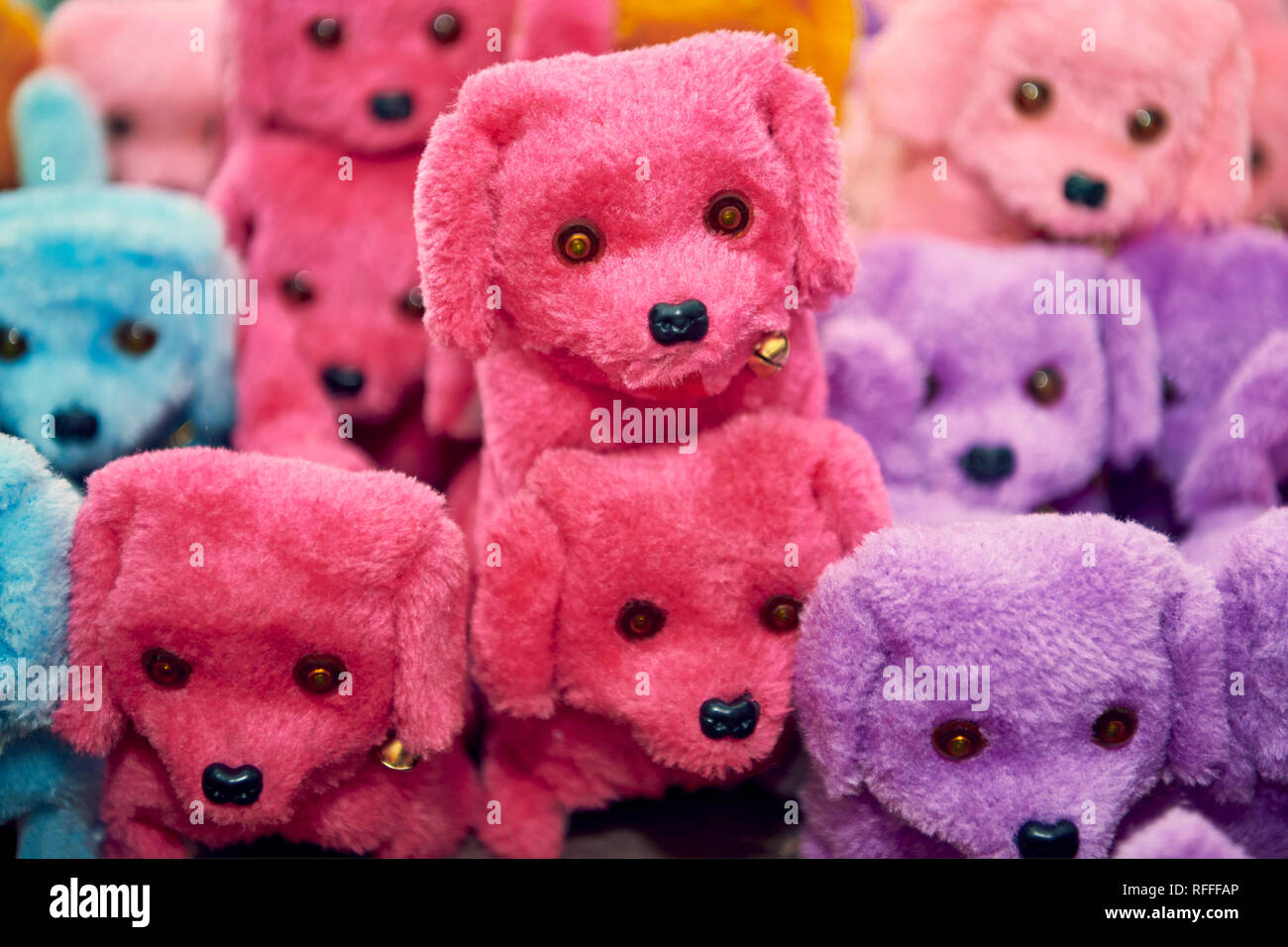 Small cute group of stuffed toy dogs in different colors - Stock Image