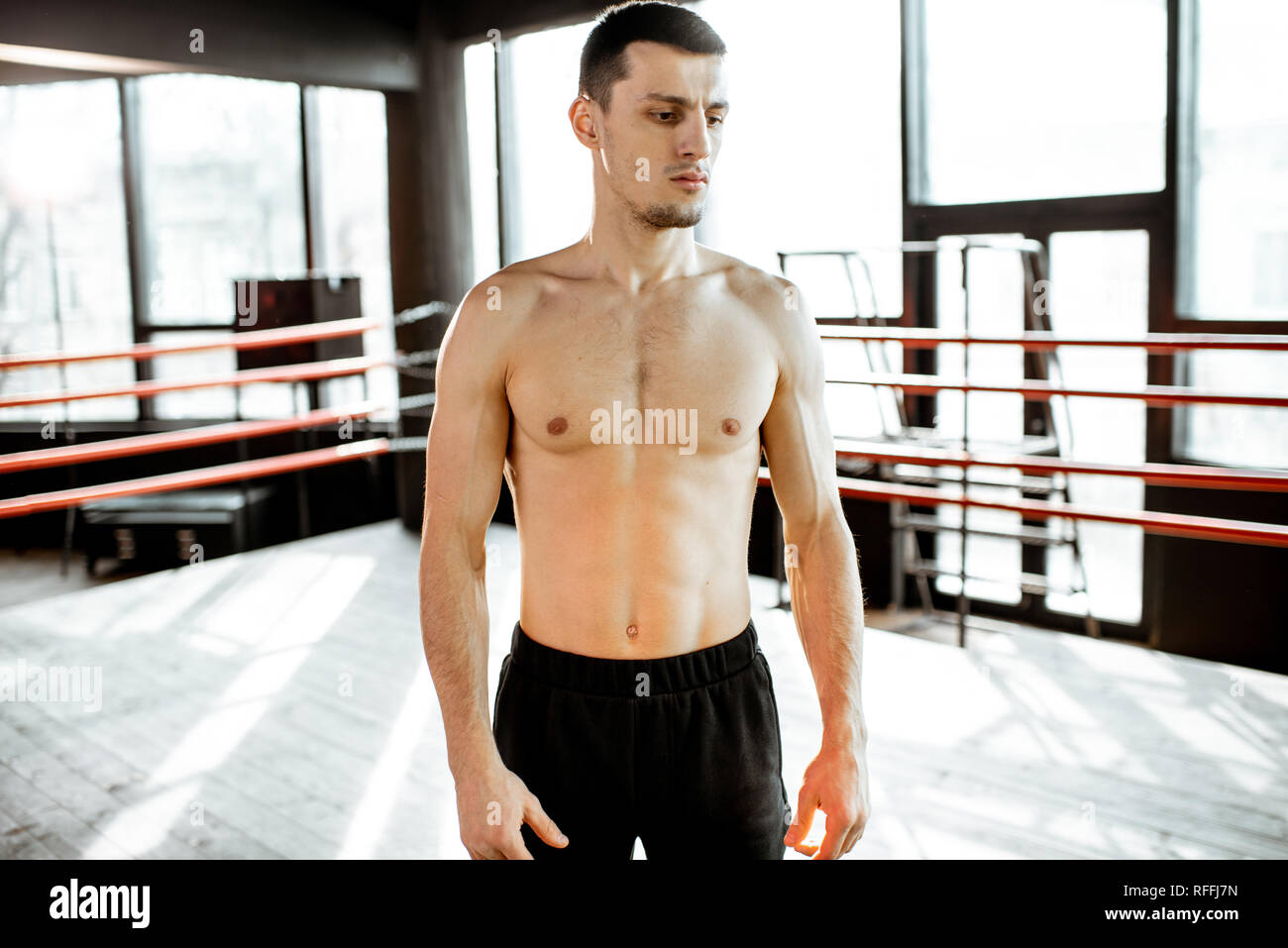 Portrait of a strong boxer showing muscles during the training on the boxing ring at the gym - Stock Image