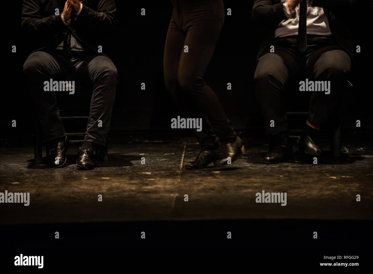 'Emociones' Flamenco show, Teatro Flamenco Madrid, January 2019 - Stock Image