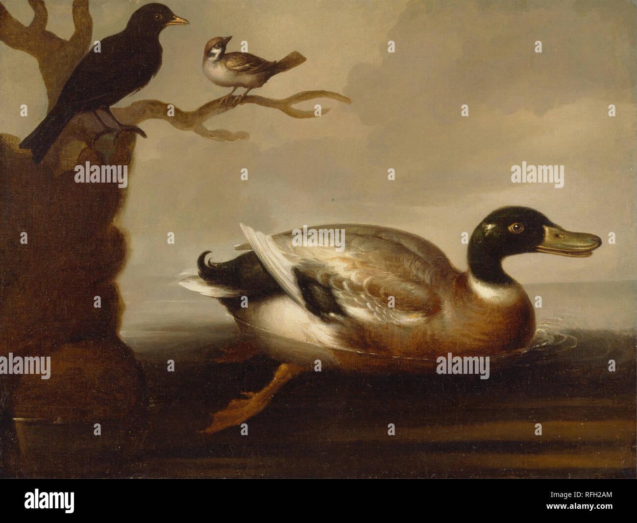 Marmaduke Cradock Mallards on a Pond Wall Art Poster Print