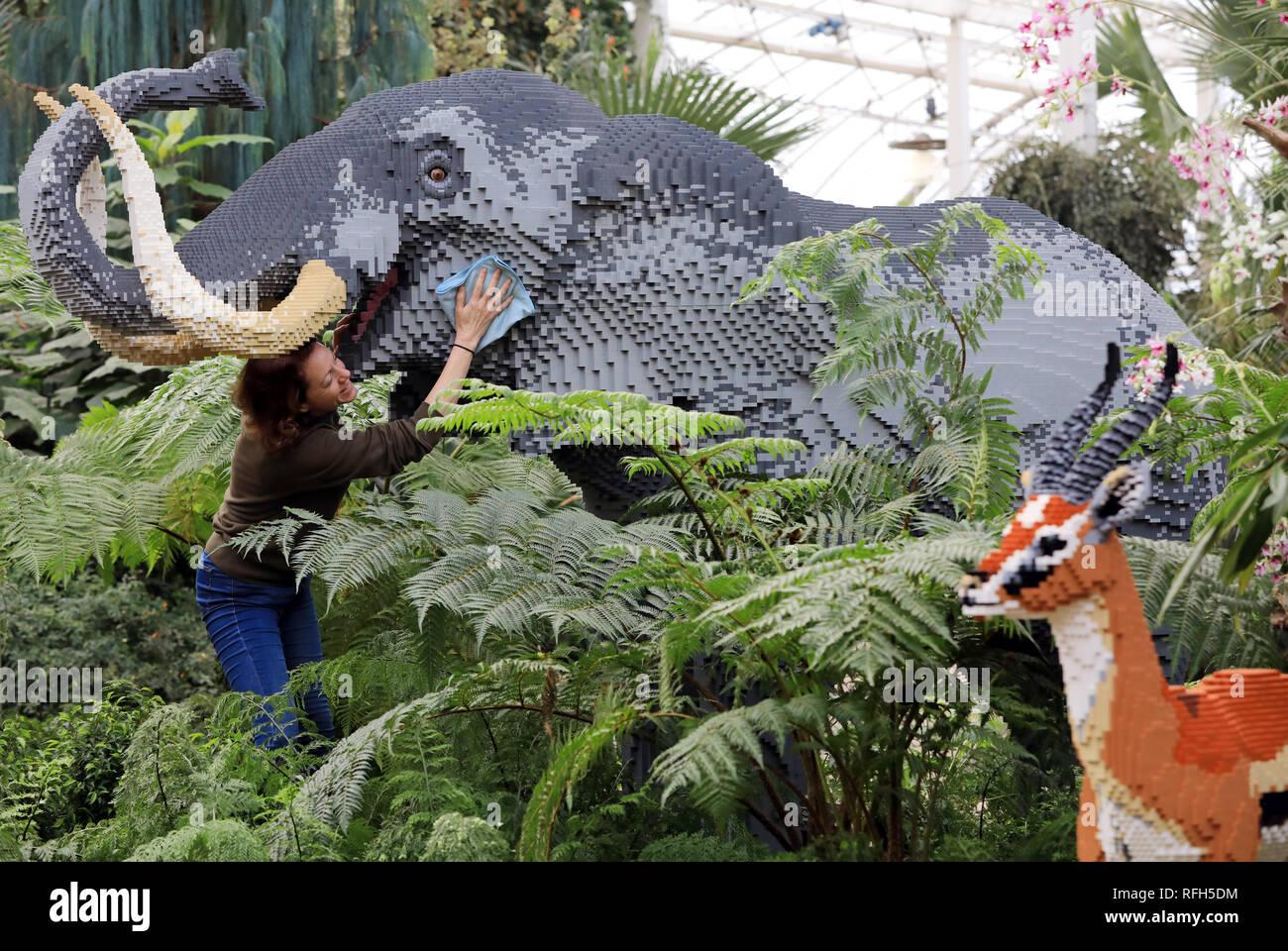 Rhs Garden Wisley Surrey Uk 25th Jan 2019 Emma Allen Garden Manager 44 From Surrey Adds