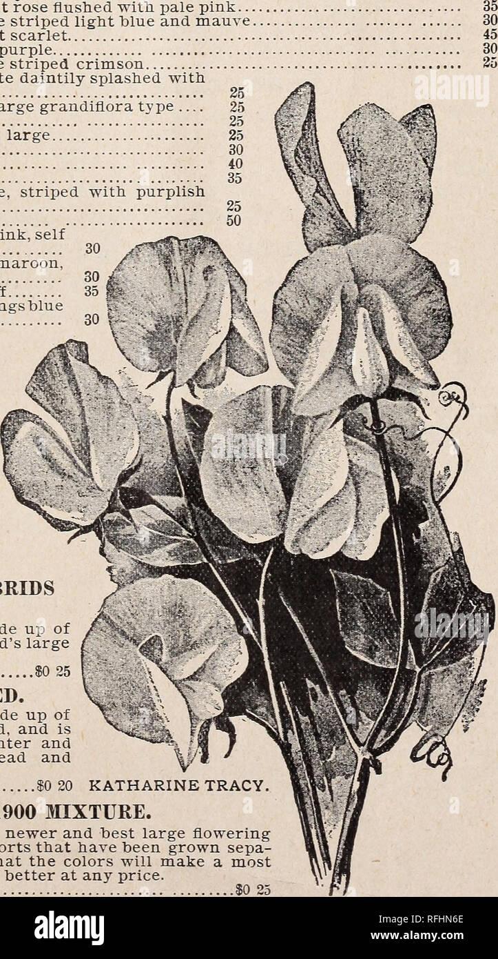 Wholesale price list January, 1900 : seed in bulk  Nursery