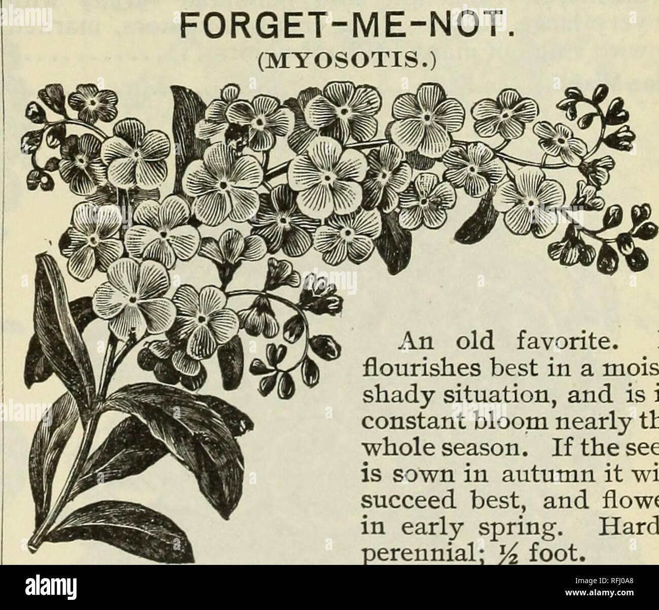 Spring 1899  Nursery stock Ohio Catalogs