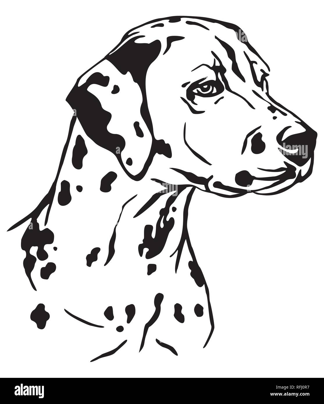 Decorative outline portrait of Dog Dalmatian in profile, vector illustration in black color isolated on white background. Image for design and tattoo. - Stock Vector