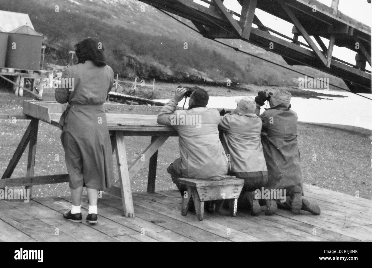 Black and white photograph of a woman and three men, shot from the behind; the woman wears a tea-length dress or coat and ankle socks, and stands just left of the men, who wear coats and boots, and look through binoculars while sitting and kneeling at a rickety wooden table built at the edge of a pier; with a slope, exposed shoreline, a body of water, and another pier visible in the background, and a gangplank visible in at top right; photographed during a hunting and fishing trip located in Alaska, 1955. () - Stock Image