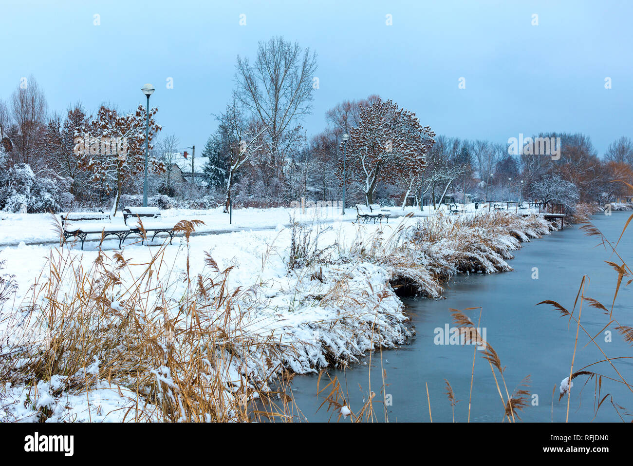 Beautiful winter landscape with frozen lake, snow covered trees and