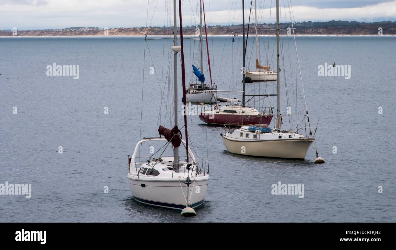 34d526f0a2c7 Sailing vessels and boats in the Monterey Harbor. The boats and sailing  vessels create interesting scenics and patterns on the water.
