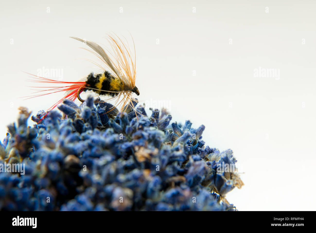 Fly fishing fly, bee imitation for trout or salmon on white background Stock Photo