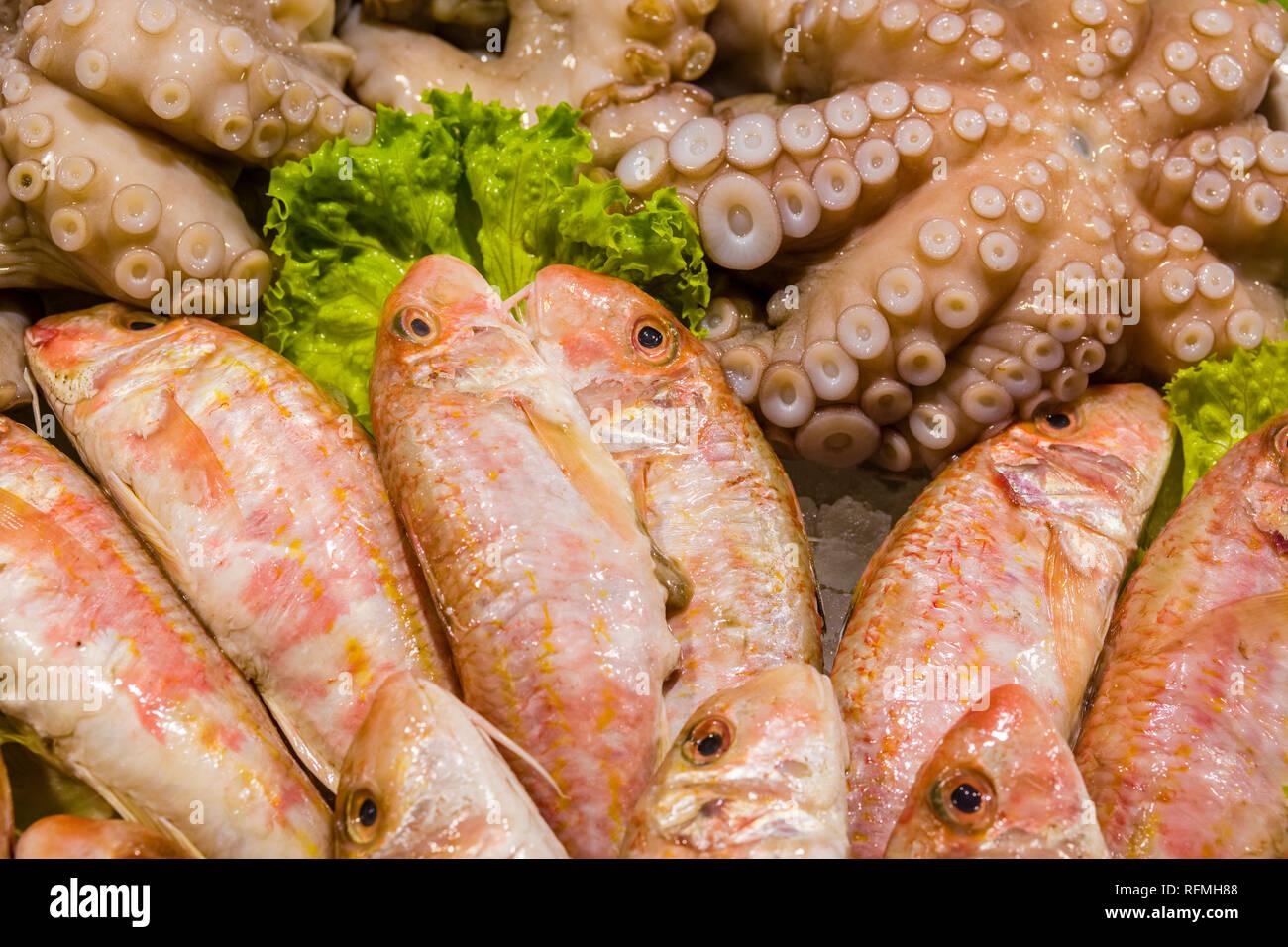 Fresh fish and squid is sold at Rialto Market, Mercato di Rialto - Stock Image