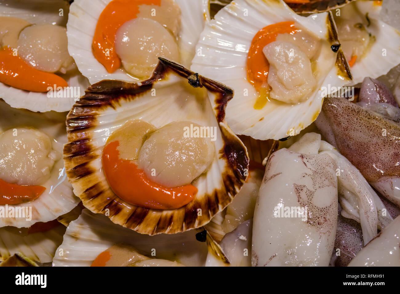 Fresh scallops (Pectinidae) are sold at Rialto Market, Mercato di Rialto - Stock Image